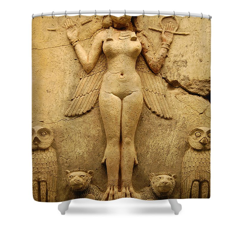 Egypt Shower Curtain featuring the photograph Egypt 1 by Gina Dsgn
