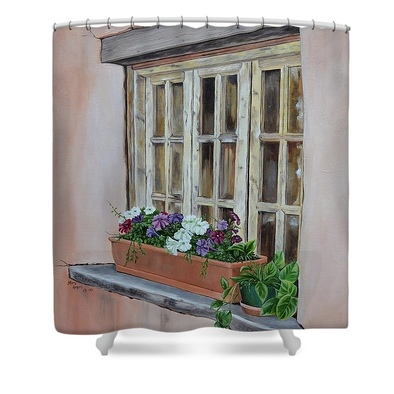 Adobe Shower Curtain featuring the painting Elayne Look Through The Window by Mary Rogers