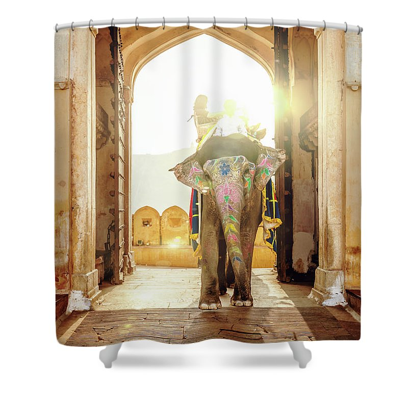 Working Animal Shower Curtain featuring the photograph Elephant At Amber Palace Jaipur,india by Mlenny