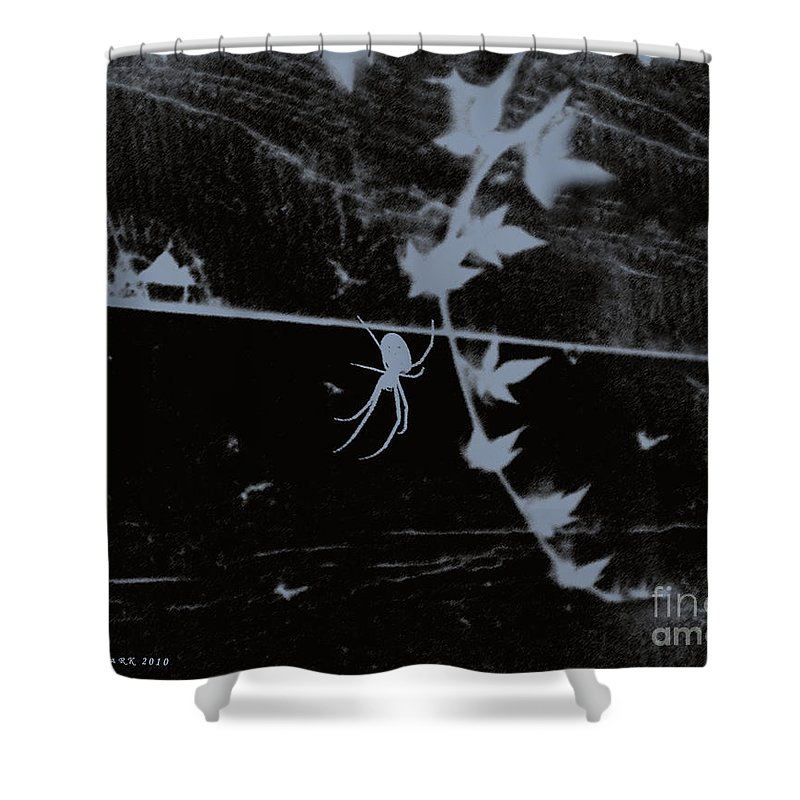 Spider Shower Curtain featuring the photograph Emphasis From The Series The Elements And Principles Of Art by Verana Stark