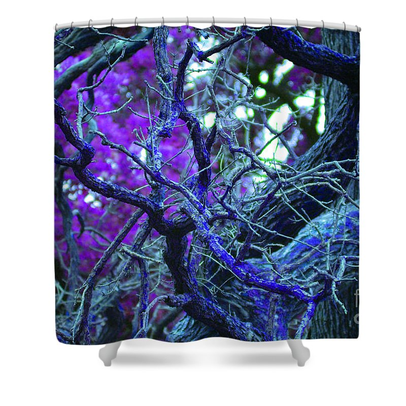 First Star Art By Jrr Shower Curtain featuring the photograph Enchanted Forest by First Star Art