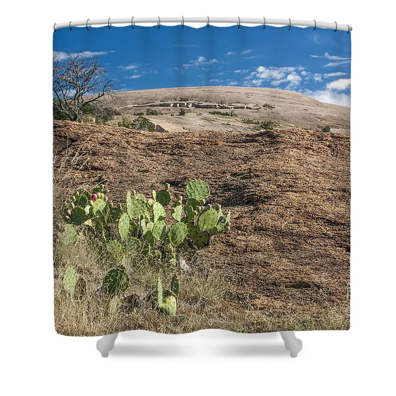 Cutts Nature Photography Shower Curtain featuring the photograph Enchanted Space by David Cutts