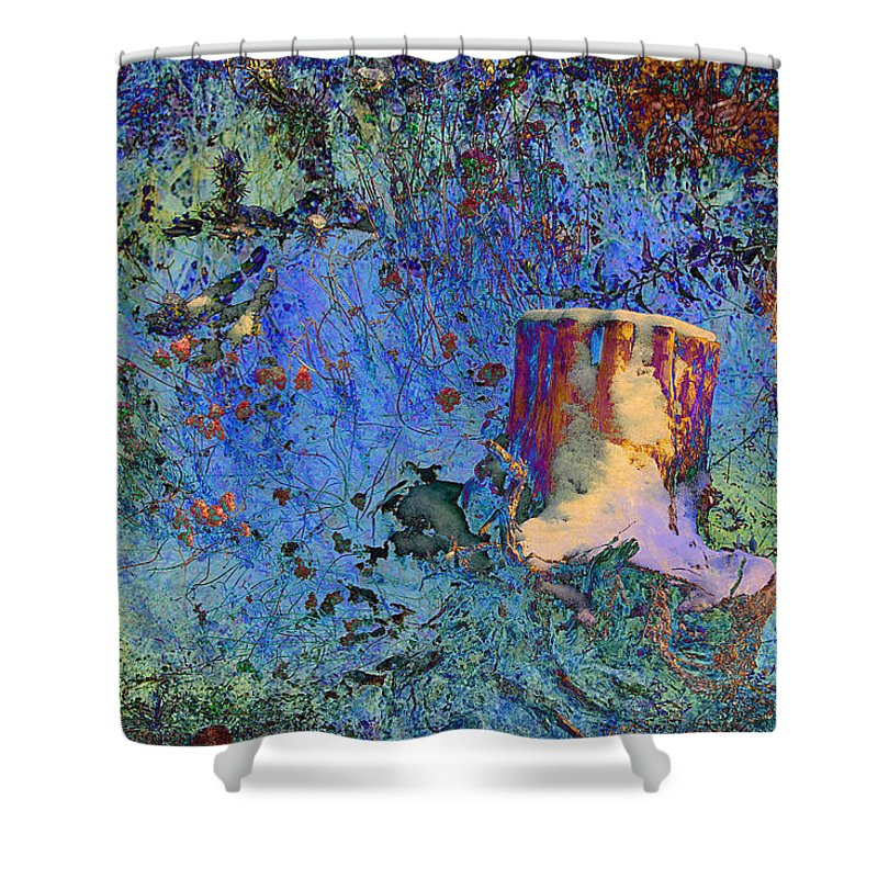 Fantasy Shower Curtain featuring the photograph Enchanting Snow Forest by Phyllis Denton