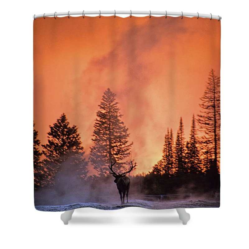 Nature Shower Curtain featuring the photograph End Of The Day by Sharon M Connolly