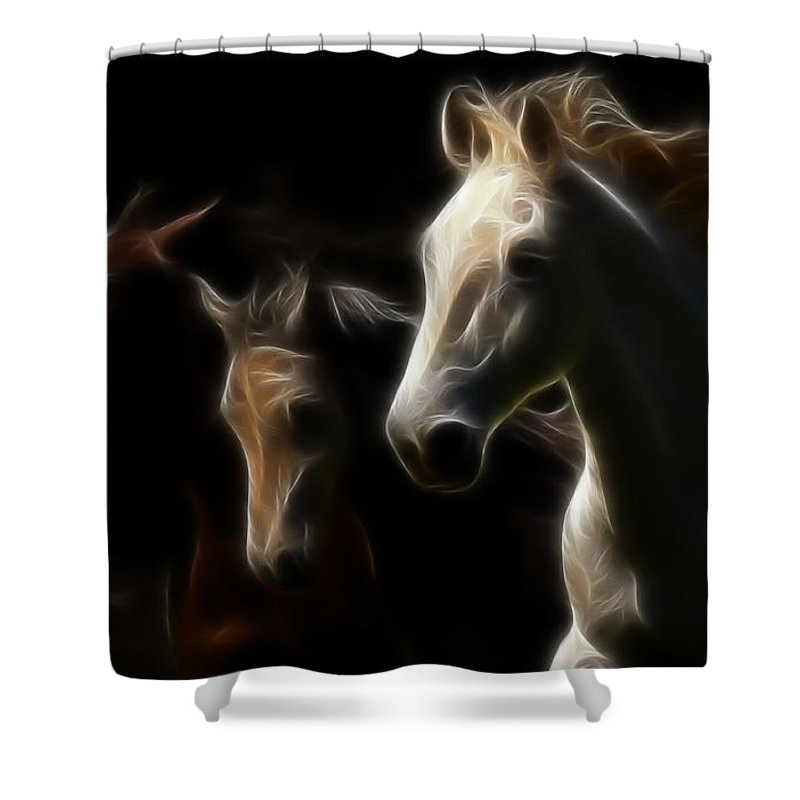 Freisian Shower Curtain featuring the photograph Enlightened Equestrian by Athena Mckinzie