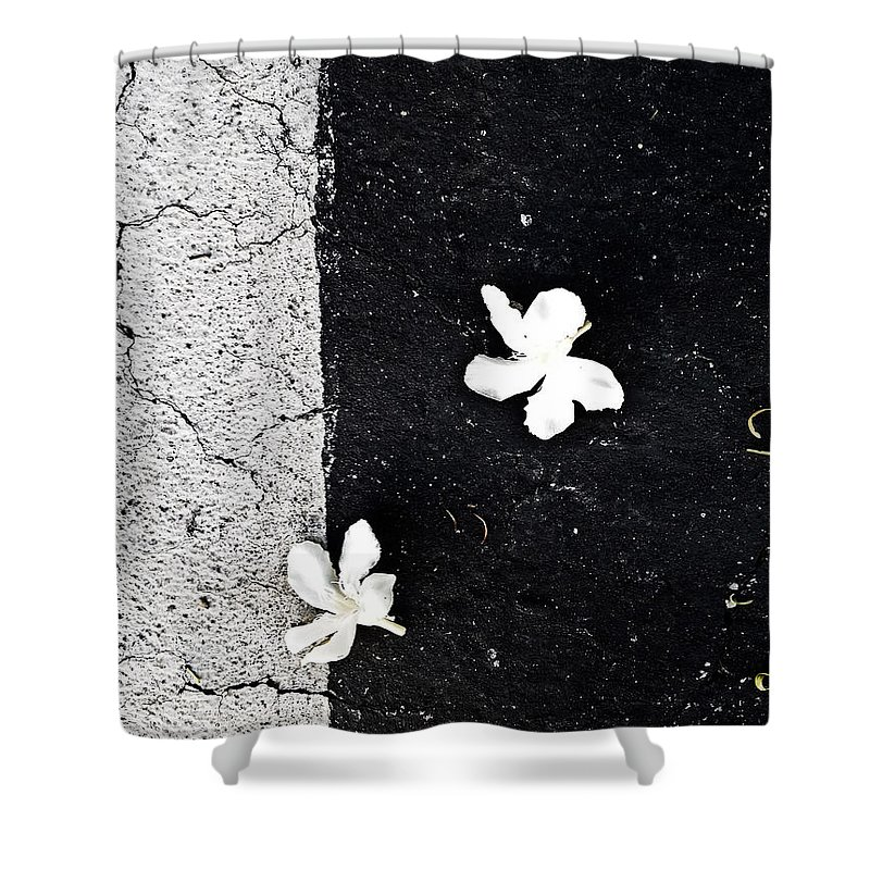 Abstract Shower Curtain featuring the photograph Essence Of The Wind by Fei A