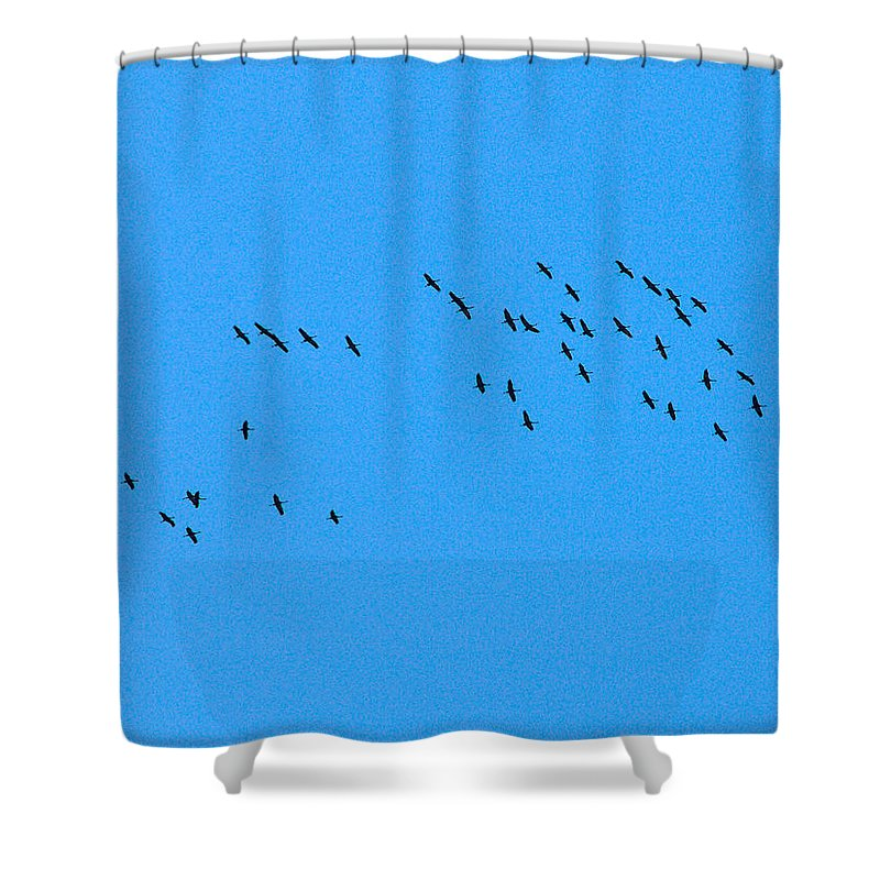 Lehto Shower Curtain featuring the photograph Eurasian Cranes by Jouko Lehto