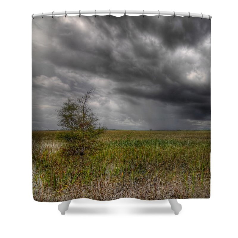 Bush Shower Curtain featuring the photograph Everglades Storm by Rudy Umans