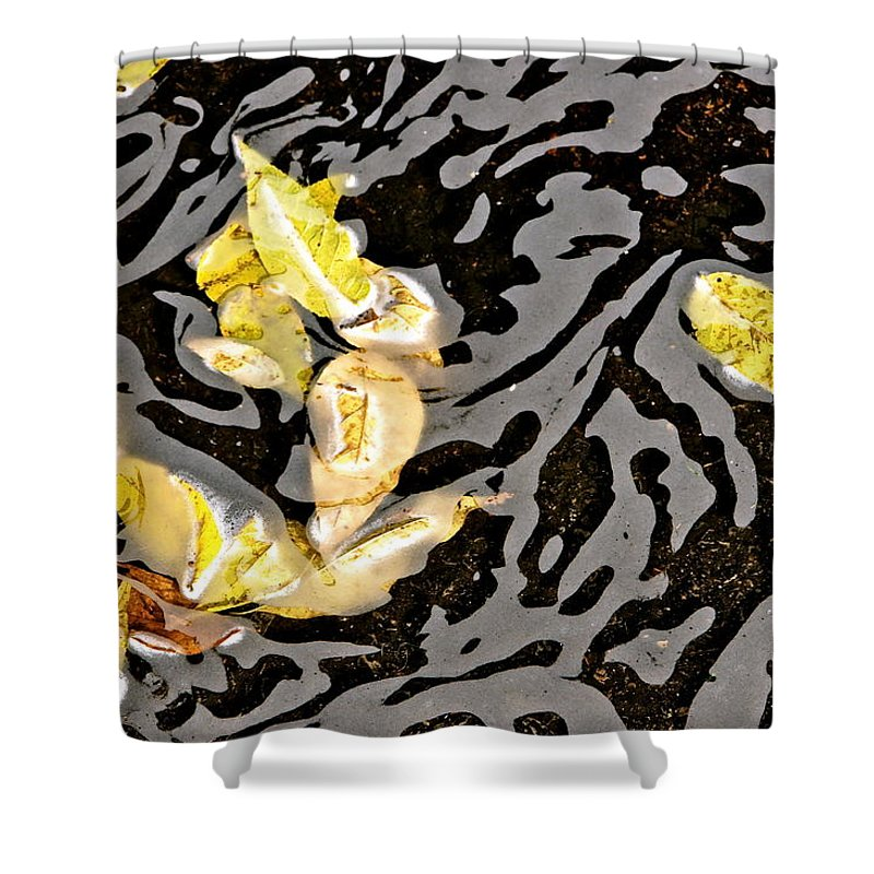 Leaf And Water Design Shower Curtain featuring the photograph Everywhere You Look by Ira Shander
