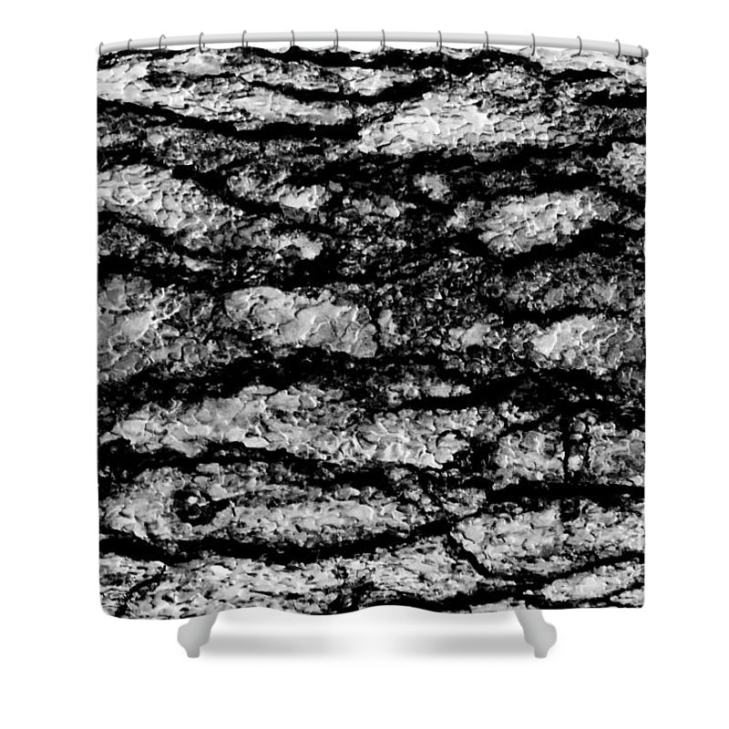 Digital Black And White Photo Shower Curtain featuring the digital art Exterior Skin Bw by Tim Richards