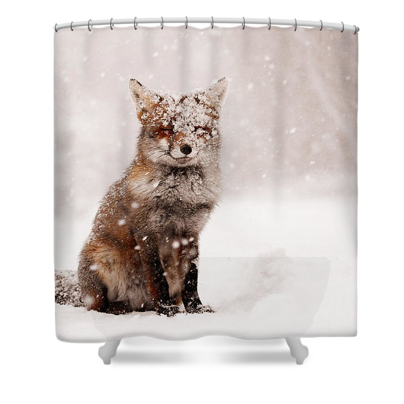 Fox Shower Curtain featuring the photograph Fairytale Fox _ Red Fox In A Snow Storm by Roeselien Raimond