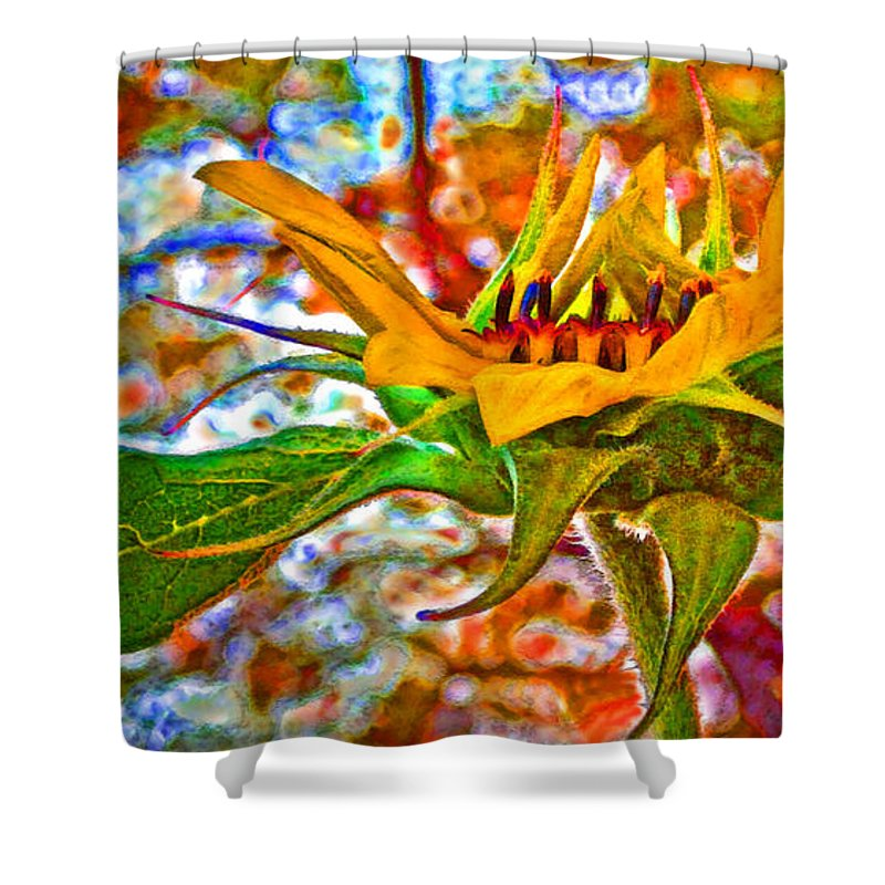 Sunflower Shower Curtain featuring the photograph Fall Aspirations by Gwyn Newcombe