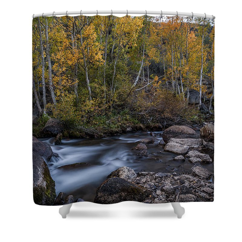 California Shower Curtain featuring the photograph Fall At Bishop Creek by Cat Connor