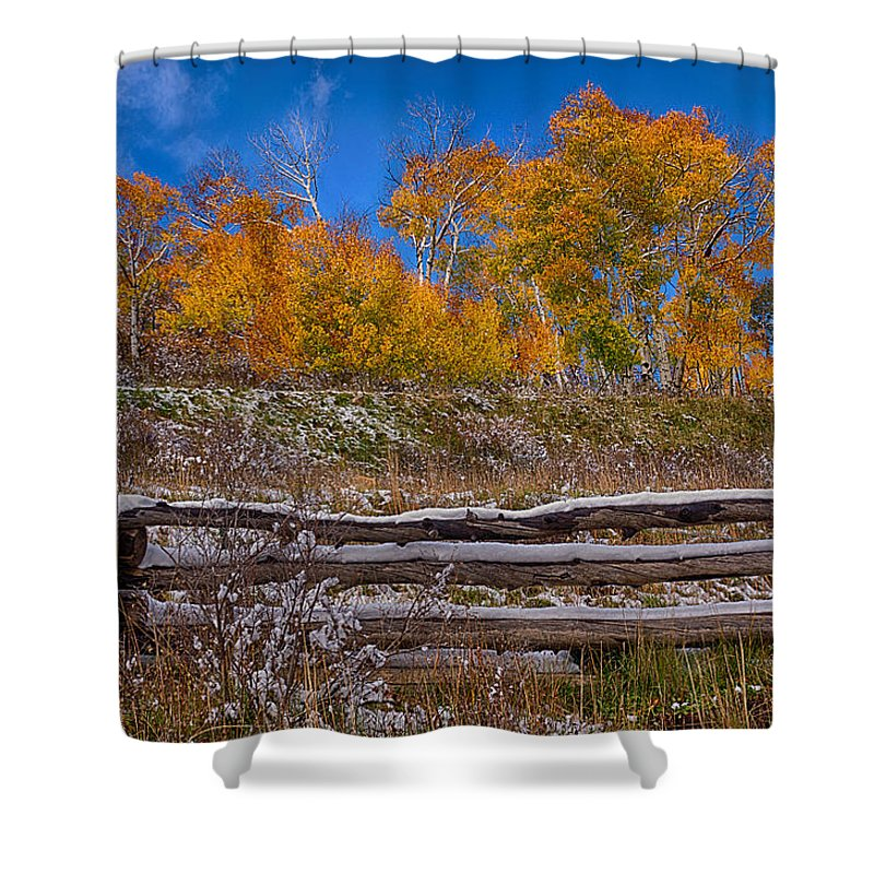 Aspen Shower Curtain featuring the photograph Fall At Last Dollar Road by Priscilla Burgers