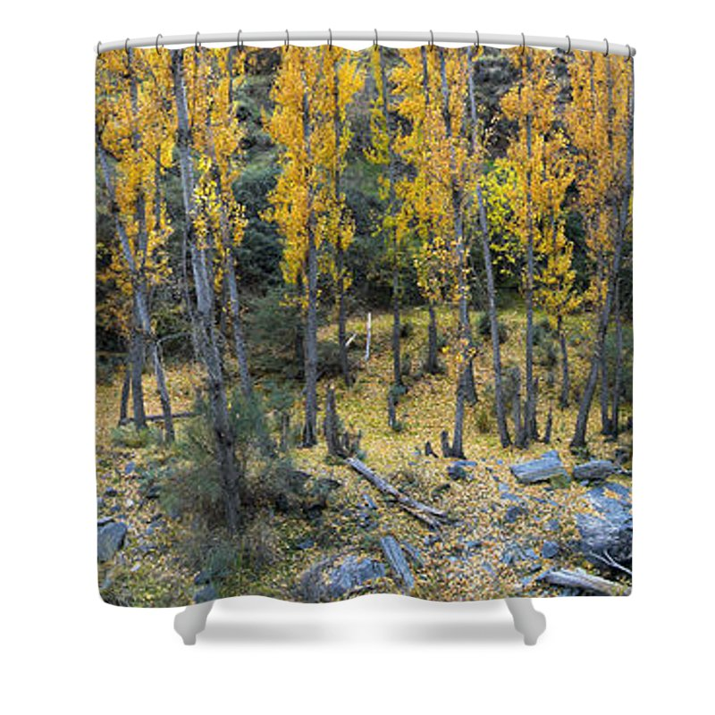 Tree Shower Curtain featuring the photograph Fall At The River by Guido Montanes Castillo