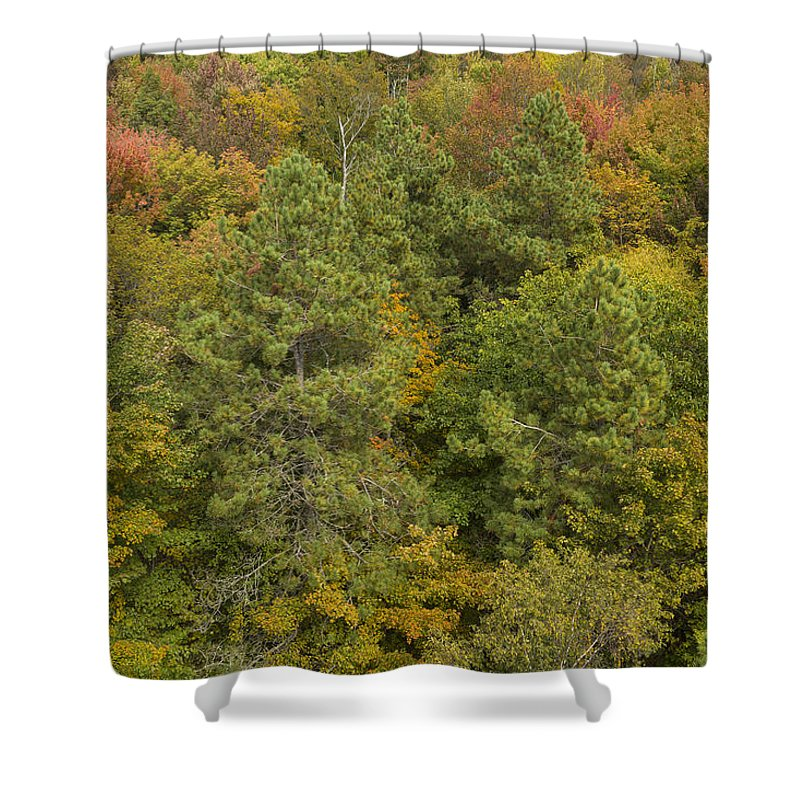 Fall Shower Curtain featuring the photograph Fall Color Hills Mi 5 by John Brueske