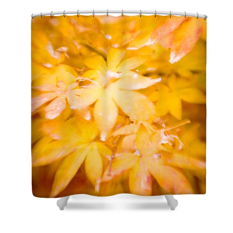 Color Shower Curtain featuring the photograph Fall Colors 6664 by Timothy Bischoff