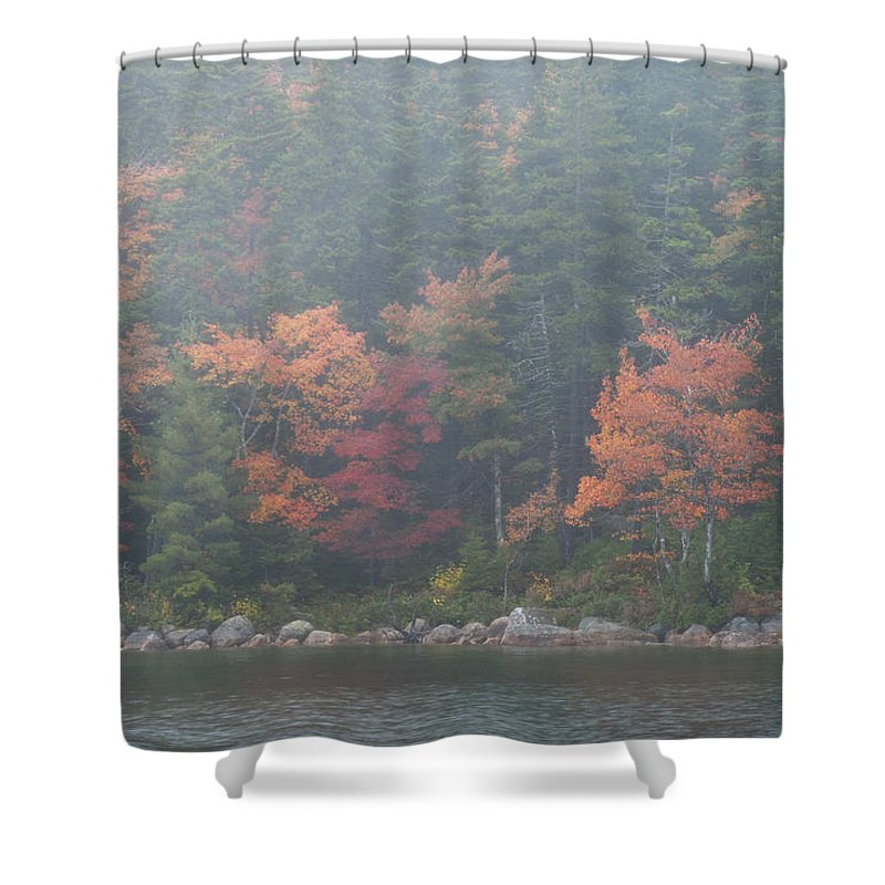 Fall Colors Shower Curtain featuring the photograph Fall Colors In Acadia National Park Maine Img 6483 by Greg Kluempers