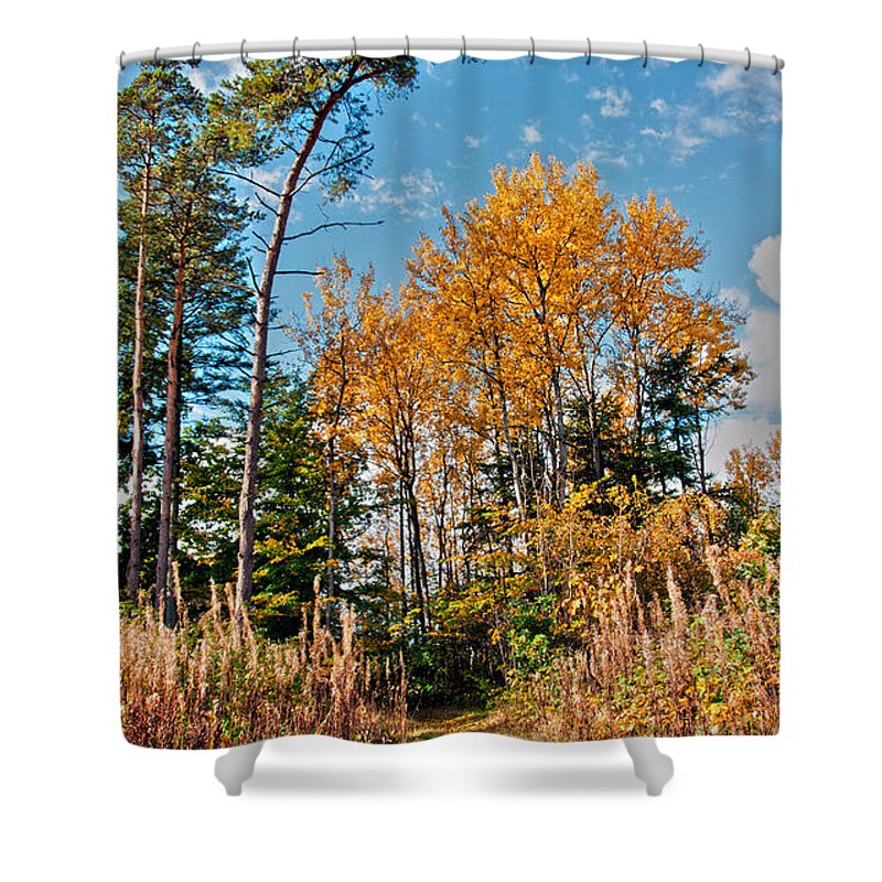 Fall Shower Curtain featuring the photograph Fall Colours by Mike Santis