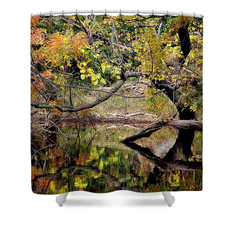 Fall Leaves Colors Branches Water One Mile Bidwell Park Chico Ca Shower Curtain featuring the photograph Fall From The Water by Holly Blunkall