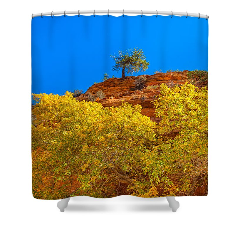 Landscape Shower Curtain featuring the photograph Fall In Zion by John M Bailey