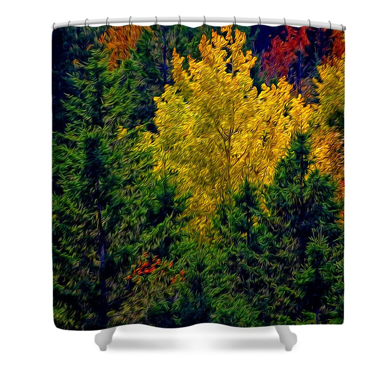 New England Shower Curtain featuring the photograph Fall Leaves by Bill Howard