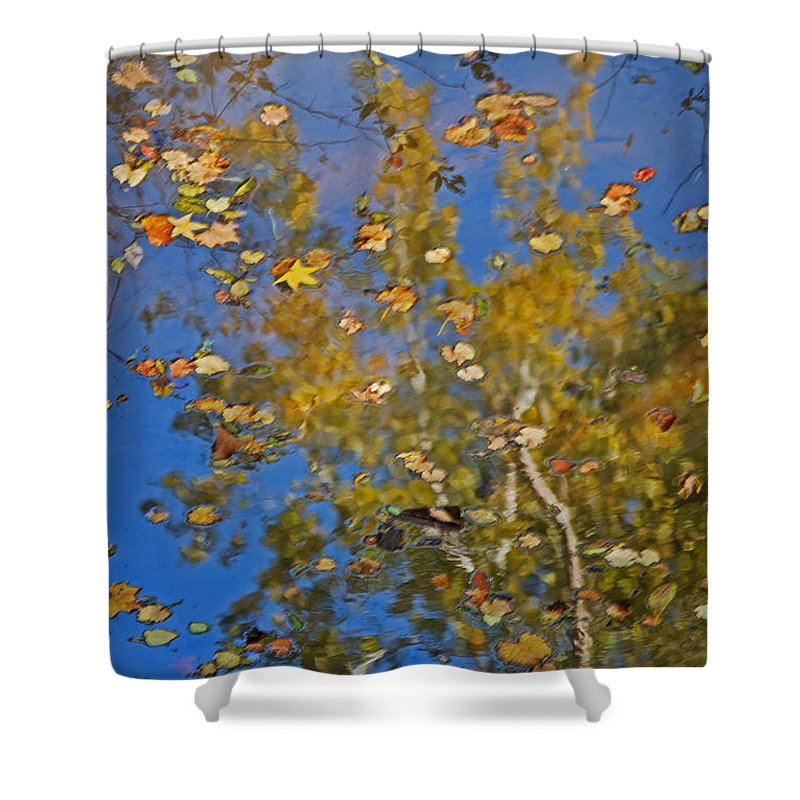 Scenic Tours Shower Curtain featuring the photograph Fall Reflections by Skip Willits