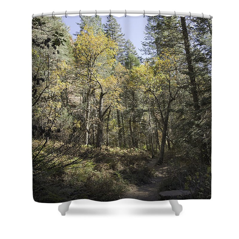 Arizona Shower Curtain featuring the photograph Fall Splender by Lorraine Harrington