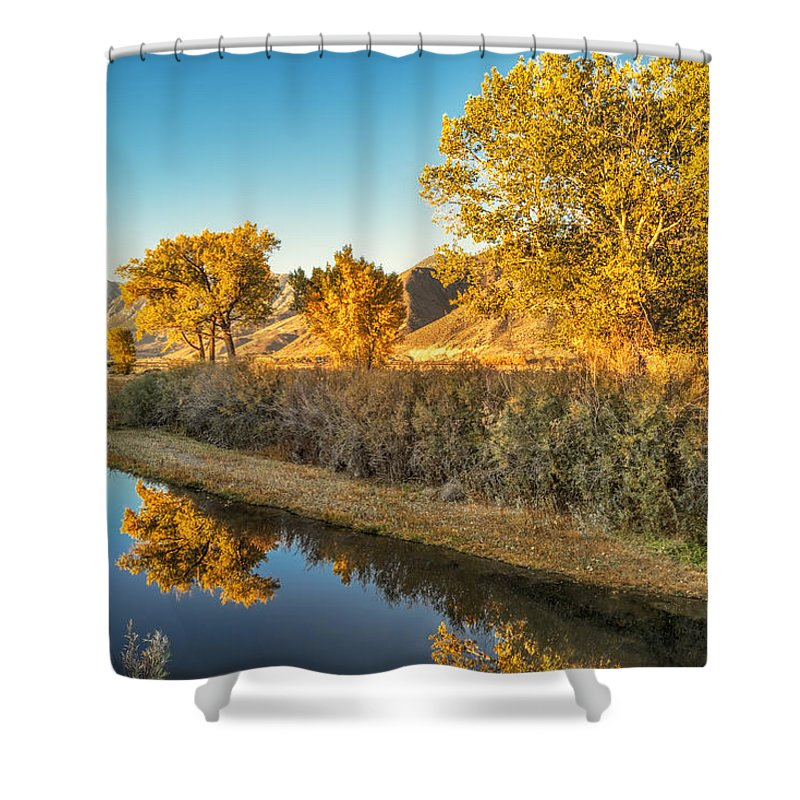 Autumn Shower Curtain featuring the photograph Fall Trees by Maria Coulson
