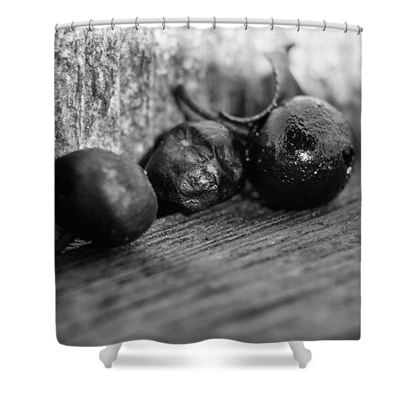 Berry Shower Curtain featuring the photograph Fallen Berries by Jim Shackett