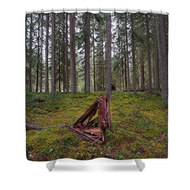 Lehto Shower Curtain featuring the photograph Fallen Tree by Jouko Lehto