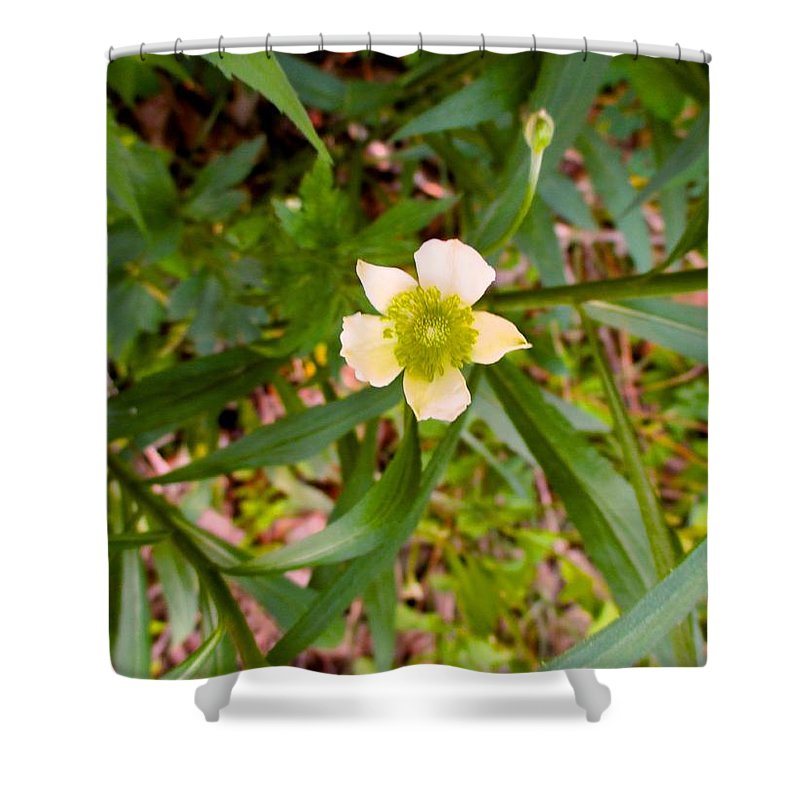 White Flowers Shower Curtain featuring the photograph Falling White by Kendall Kessler