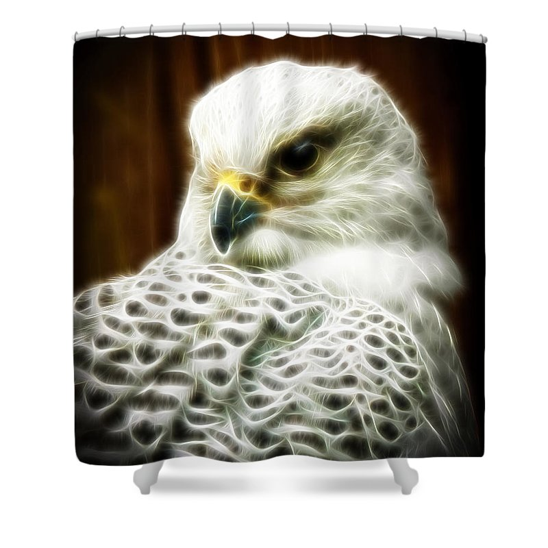 Head Shot Shower Curtain featuring the photograph Fantasy White Falcon by Steve McKinzie