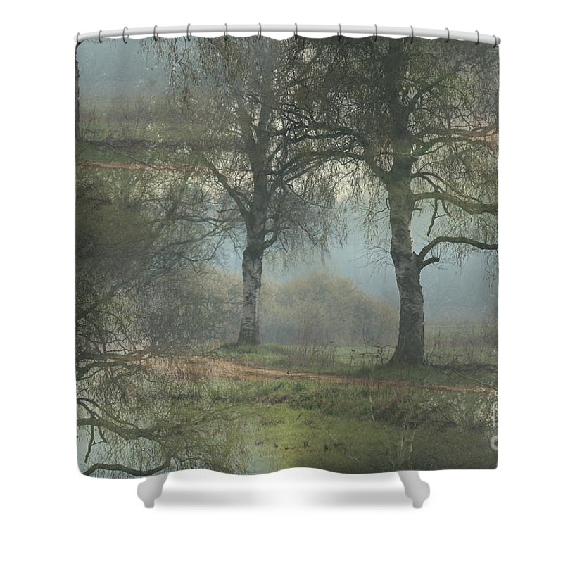 Trees Shower Curtain featuring the photograph Fascinating Landscapes by Four Hands Art