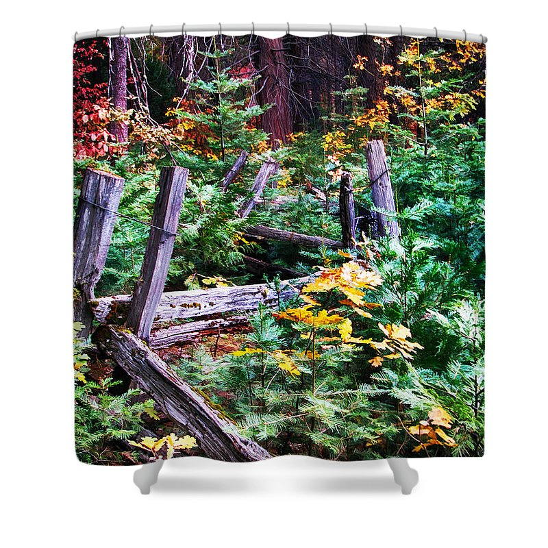 Wawona Shower Curtain featuring the painting Fields And Fences Of Wawona In Yosemite National Park by John Haldane