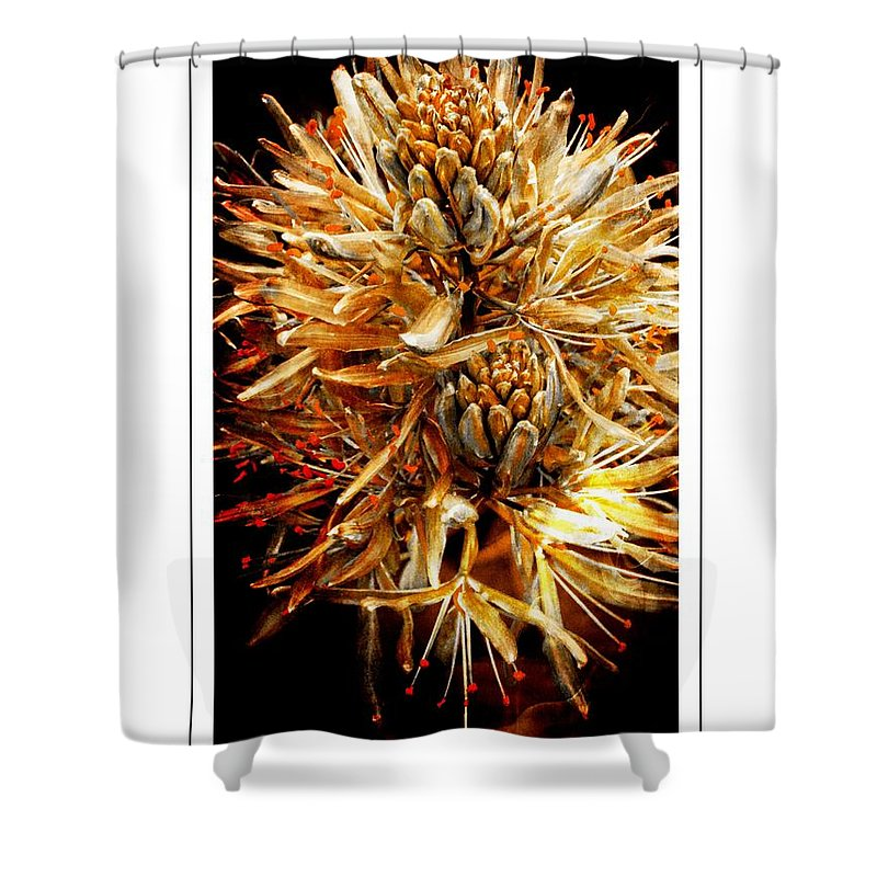 Flower Shower Curtain featuring the photograph Fiery Floral by Alice Gipson