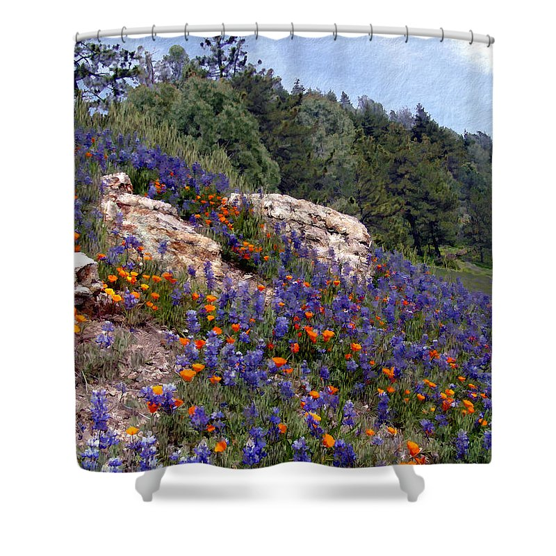Flowers Shower Curtain featuring the photograph Figueroa Mountain Splendor by Kurt Van Wagner