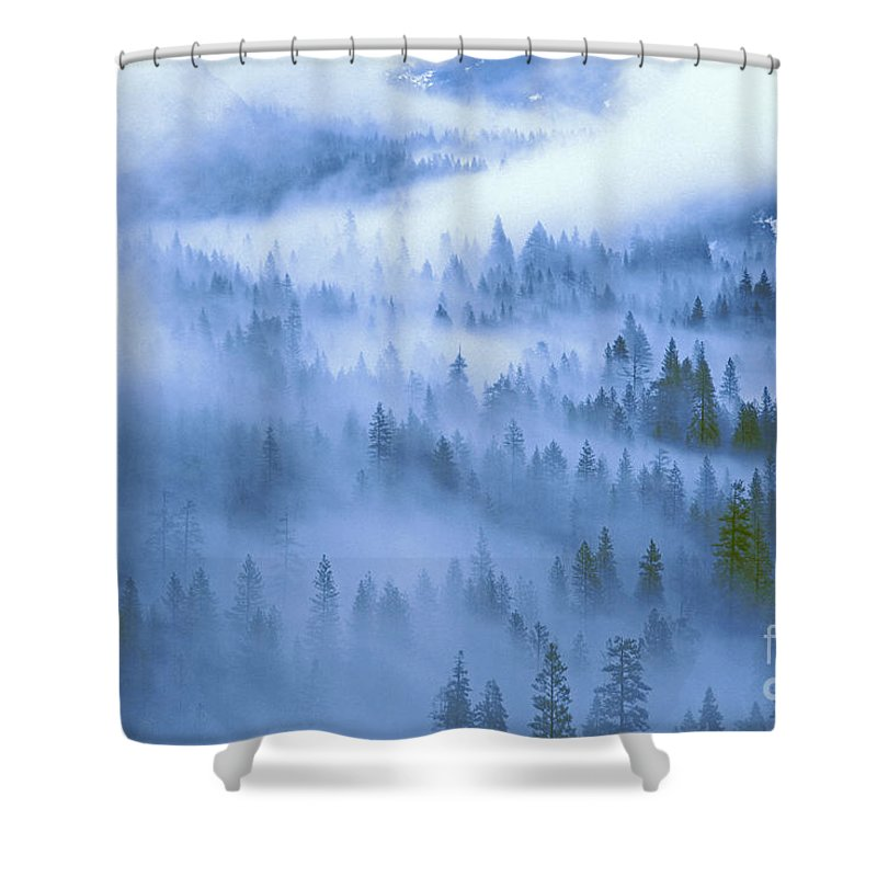 North America Shower Curtain featuring the photograph Fir Trees Shrouded In Fog In Yosemite Valley by Dave Welling