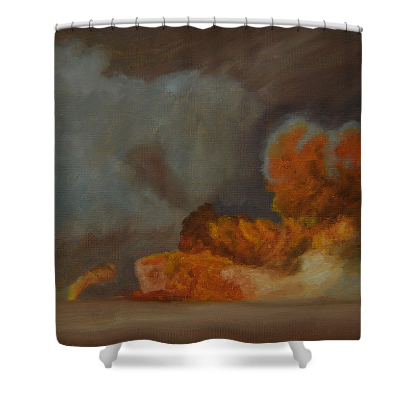 Smoke Shower Curtain featuring the painting Fire And Sand by Thu Nguyen