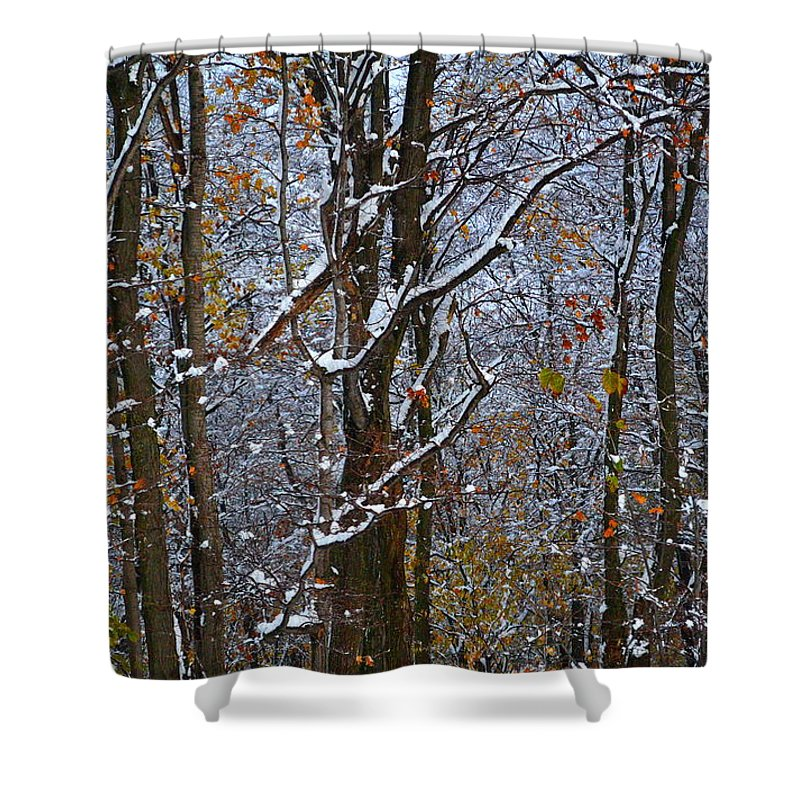 Snow Shower Curtain featuring the photograph First Snow by April Patterson