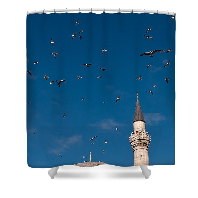 Istanbul Shower Curtain featuring the photograph Firuz Aga Mosque Seagulls by Rick Piper Photography