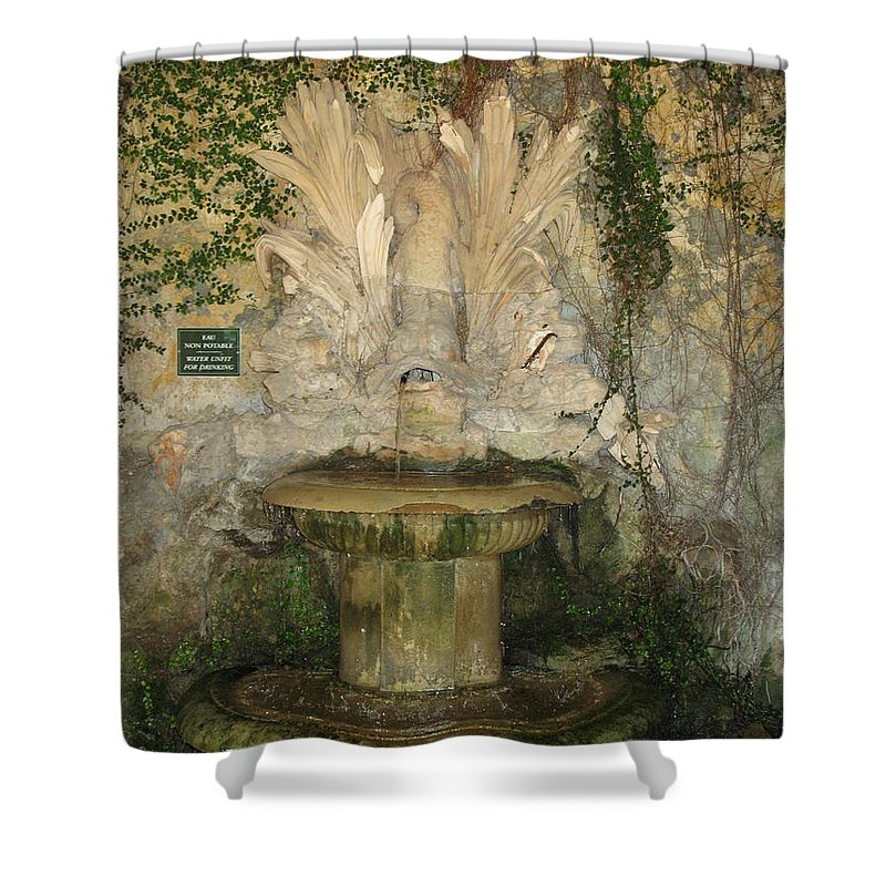 Fountain Shower Curtain featuring the photograph Fish Fountain by Christiane Schulze Art And Photography