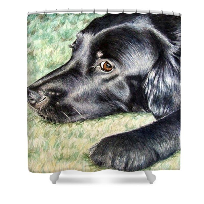 Dog Shower Curtain featuring the painting Flat Coated Retriever by Nicole Zeug