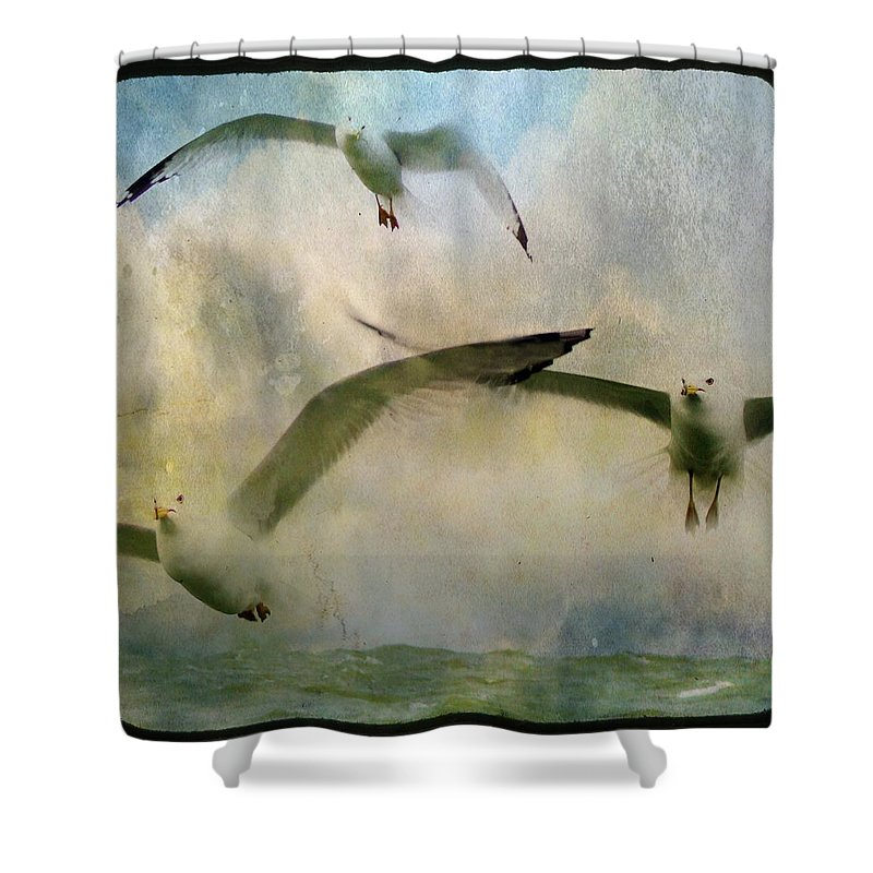 Sky Shower Curtain featuring the photograph Flight Of The Seagulls by Gothicrow Images