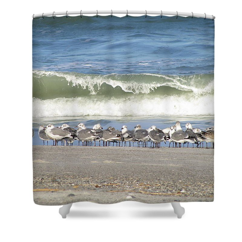 Landscape Shower Curtain featuring the photograph Flock And Wave by Ellen Meakin