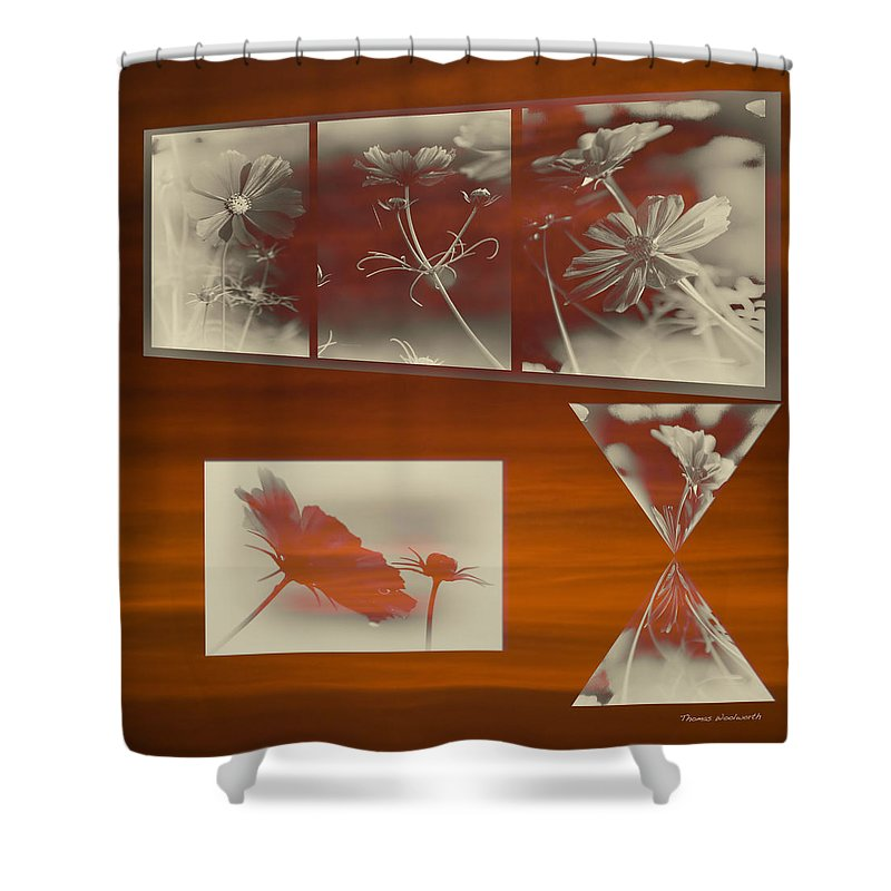 Floral Shower Curtain featuring the photograph Floral Early Garden Light 05 by Thomas Woolworth