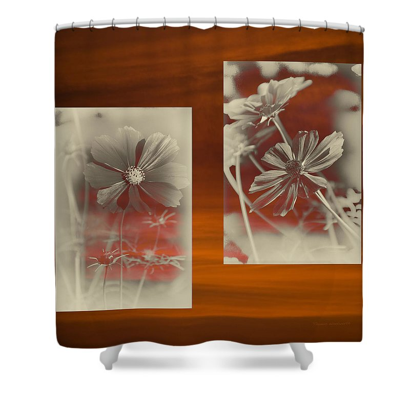 Floral Shower Curtain featuring the photograph Floral Early Garden Light 07 by Thomas Woolworth