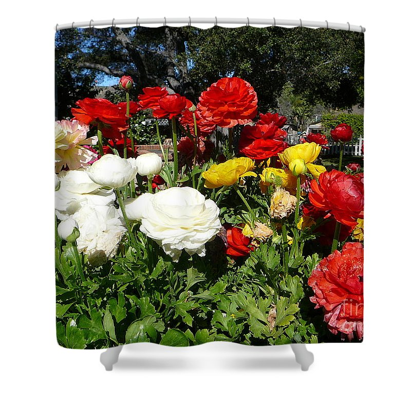 Flowers Shower Curtain featuring the photograph Floral Gardens by Mary Brhel