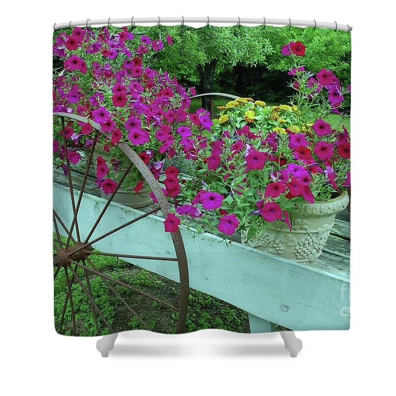 Flower Pots Shower Curtain featuring the photograph Flower Pot 2 by Allen Beatty