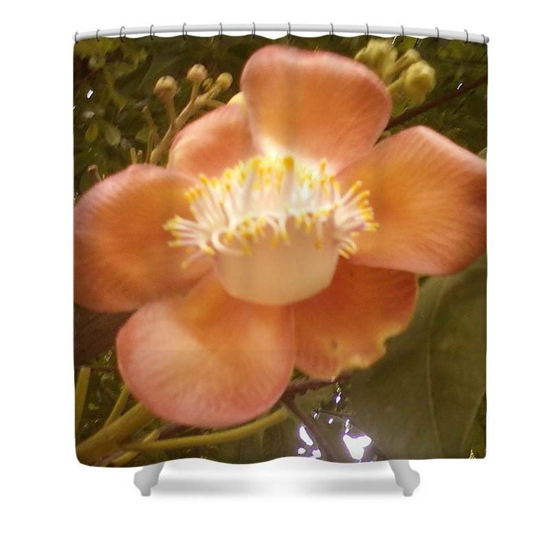Shower Curtain featuring the photograph Flower2 by Uma Swaminathan